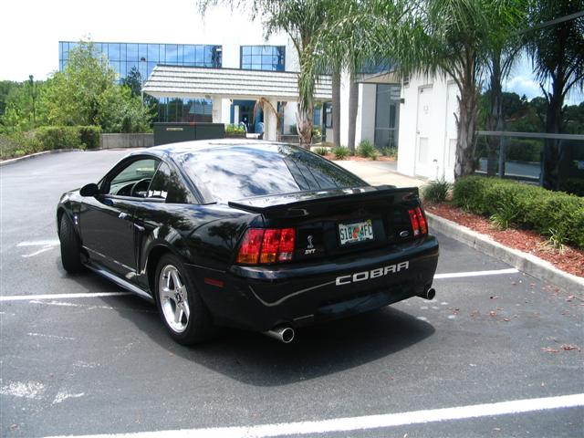 2001 Black SVT Cobra Mustang
