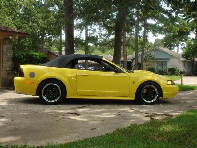2001 yellow mustang gt
