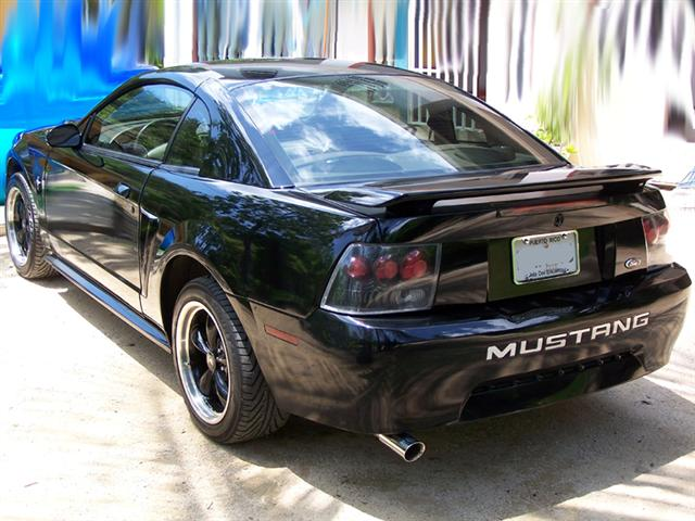 2001 Mustang V6 with Black Bullitts