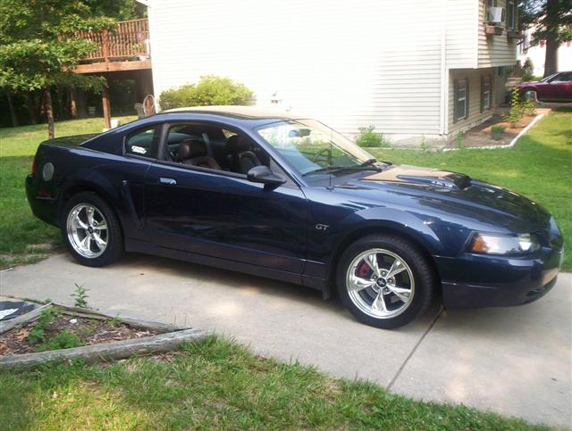 2001 Sapphire Blue Mustang