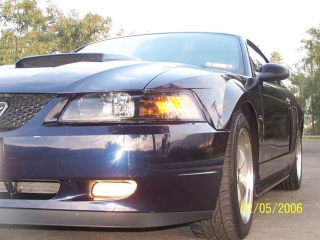 2002 Blue Mustang