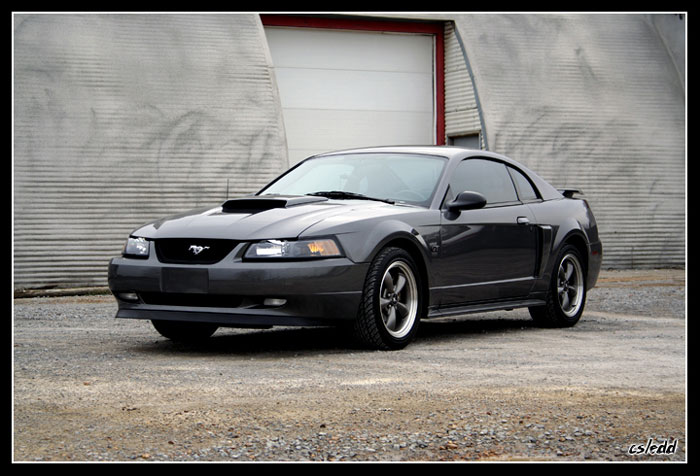 2003 Dark Shadow Gray GT