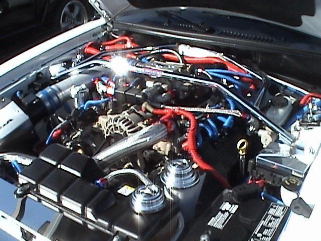 2003 White Mustang Engine 