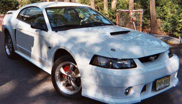 2003 White Mustang