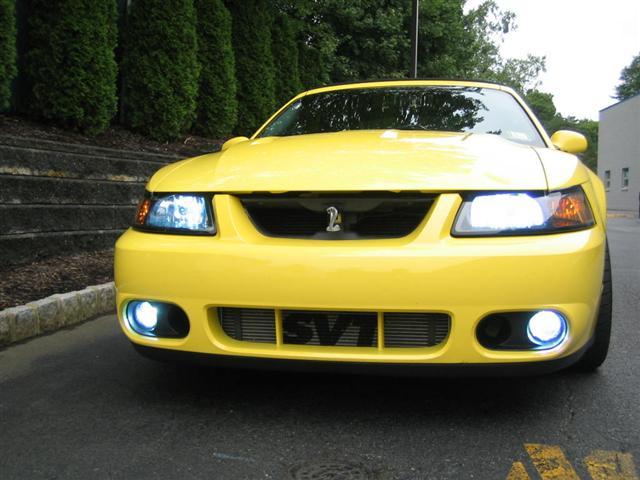 03 yellow  mustang