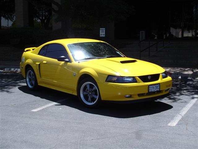 2004 Banana Yellow Mustang