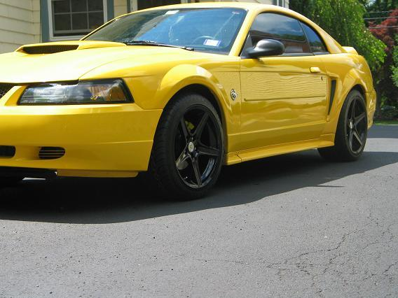 1999 3.8L Mustang with Black Saleen Rims