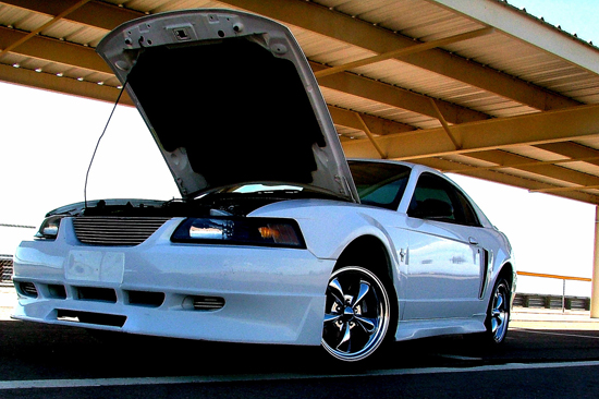 2001 Oxford White Mustang V6 1