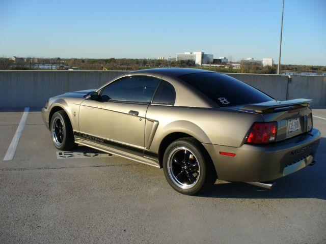 Grey Mustang 