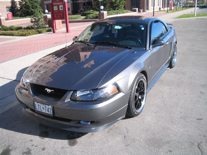 2003 Mustang 3.8L with Black FR500's