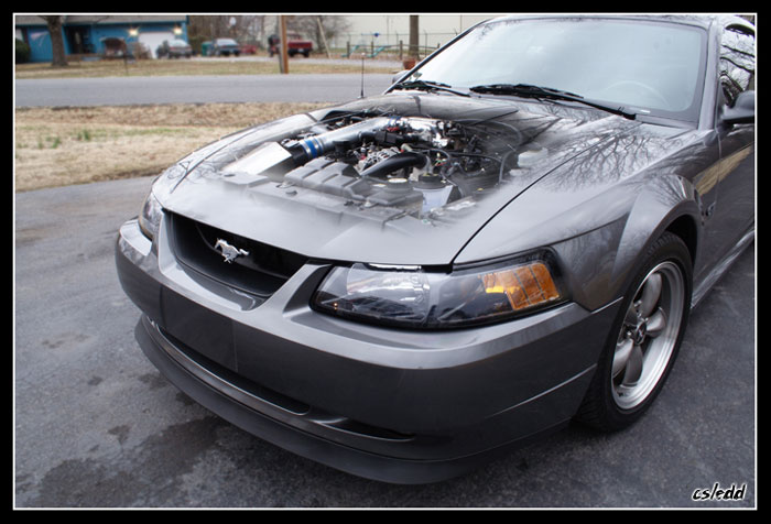 2003 Mustang GT Engine Bay