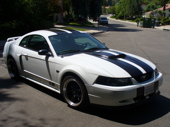 03 Racing Stripe Mustang GT
