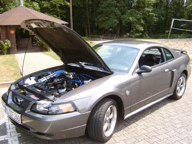 2004 Silver Mustang