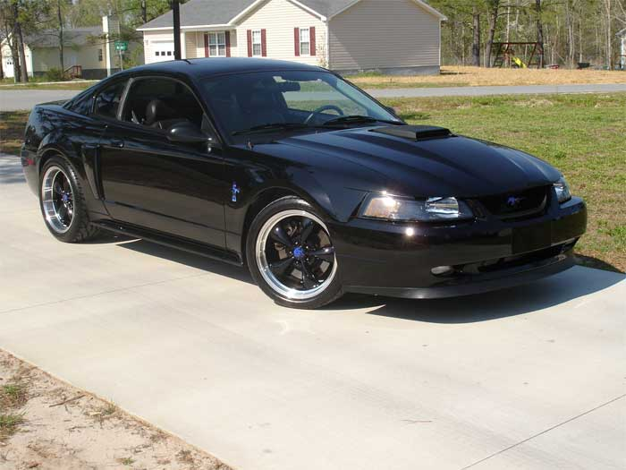 2004 Black Mach1 Bullitt Wheels