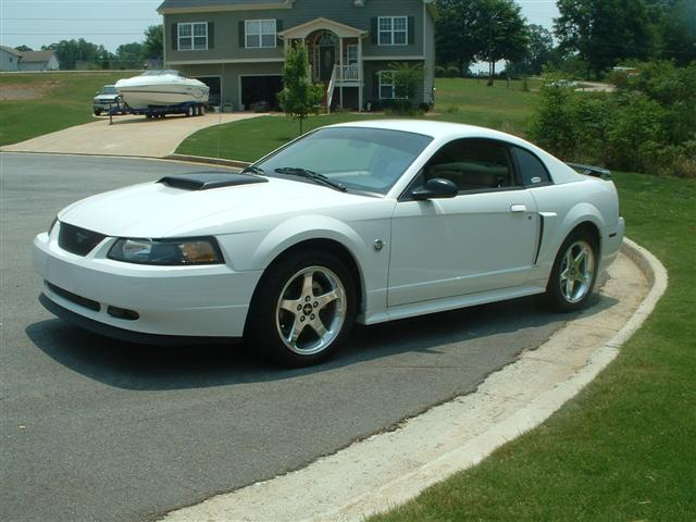2004 white mustang gt