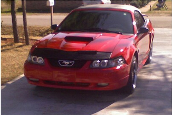 redvertstang1