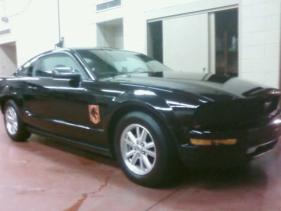 blackcoupestang