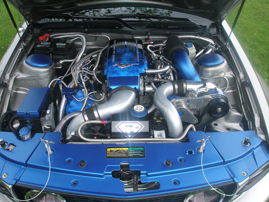 2008 Vapor Metallic Premium Mustang GT 6