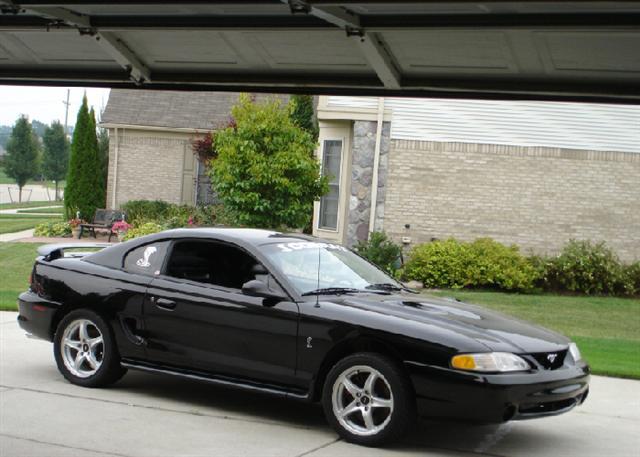 1998 Cobra Mustang