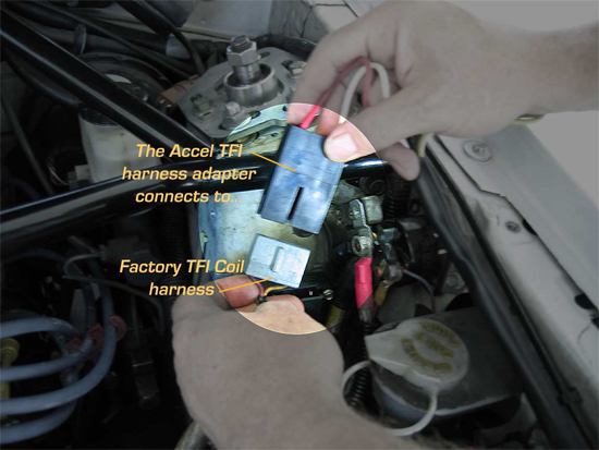 Accel 300 Ignition Control System 8495 14