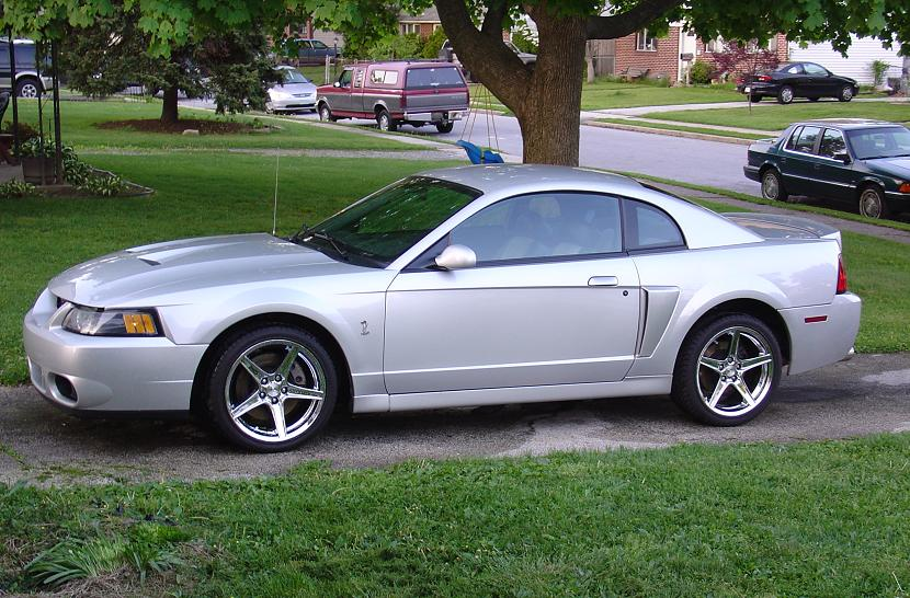 Silver 2003 Cobra Saleen Wheels
