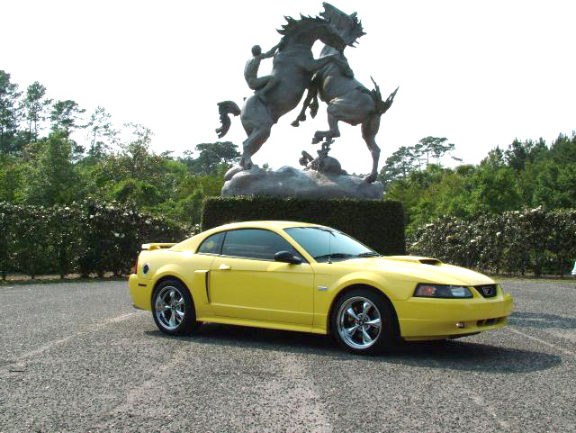 2002 Yellow Mustang GT Pictures