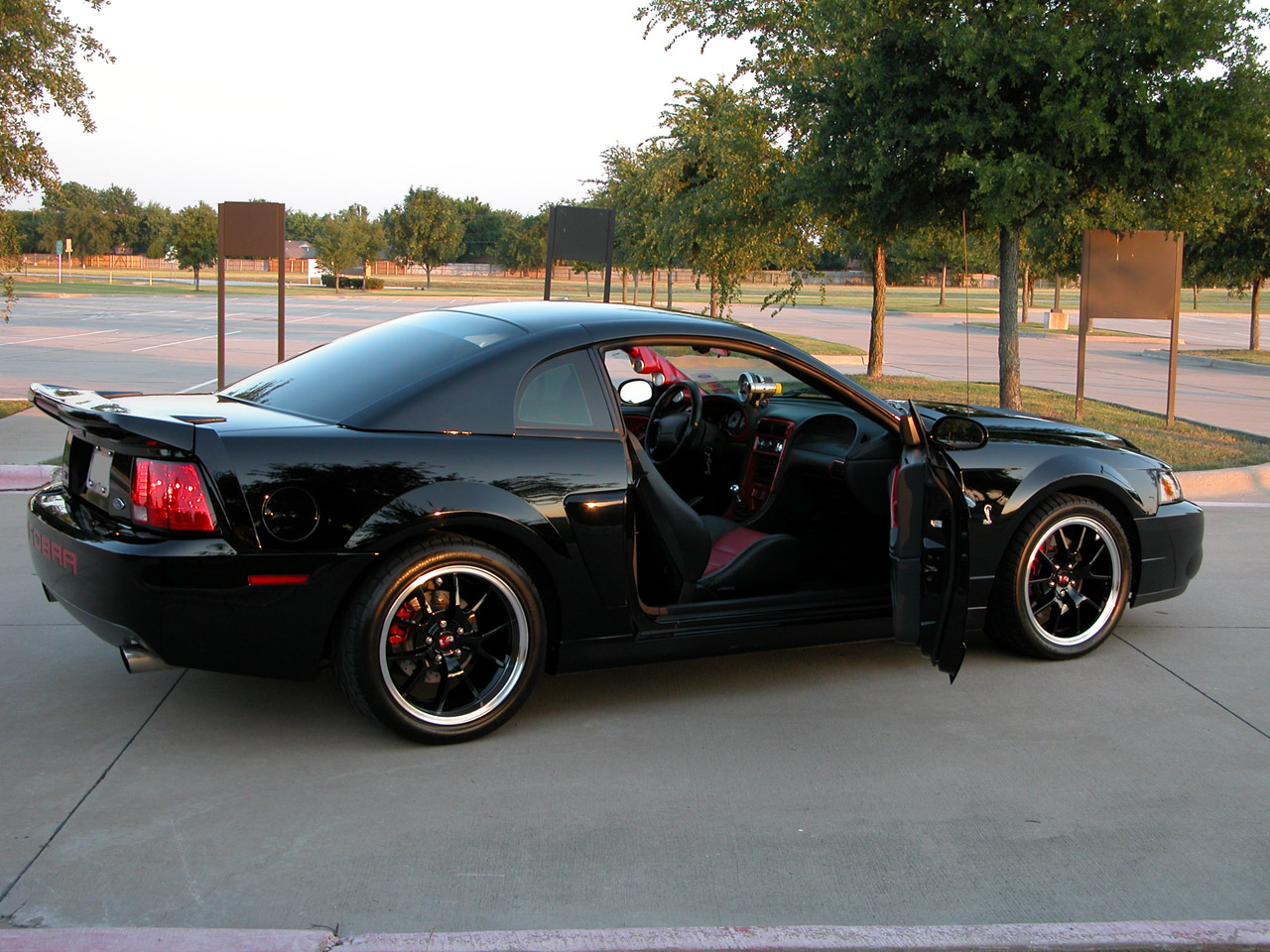 2003 Black SVT Cobra 10th Anniversary