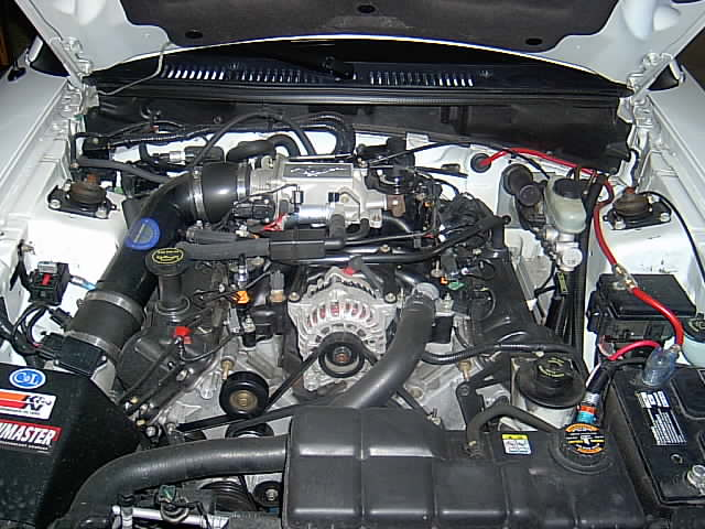 2000 Ford Mustang GT Engine