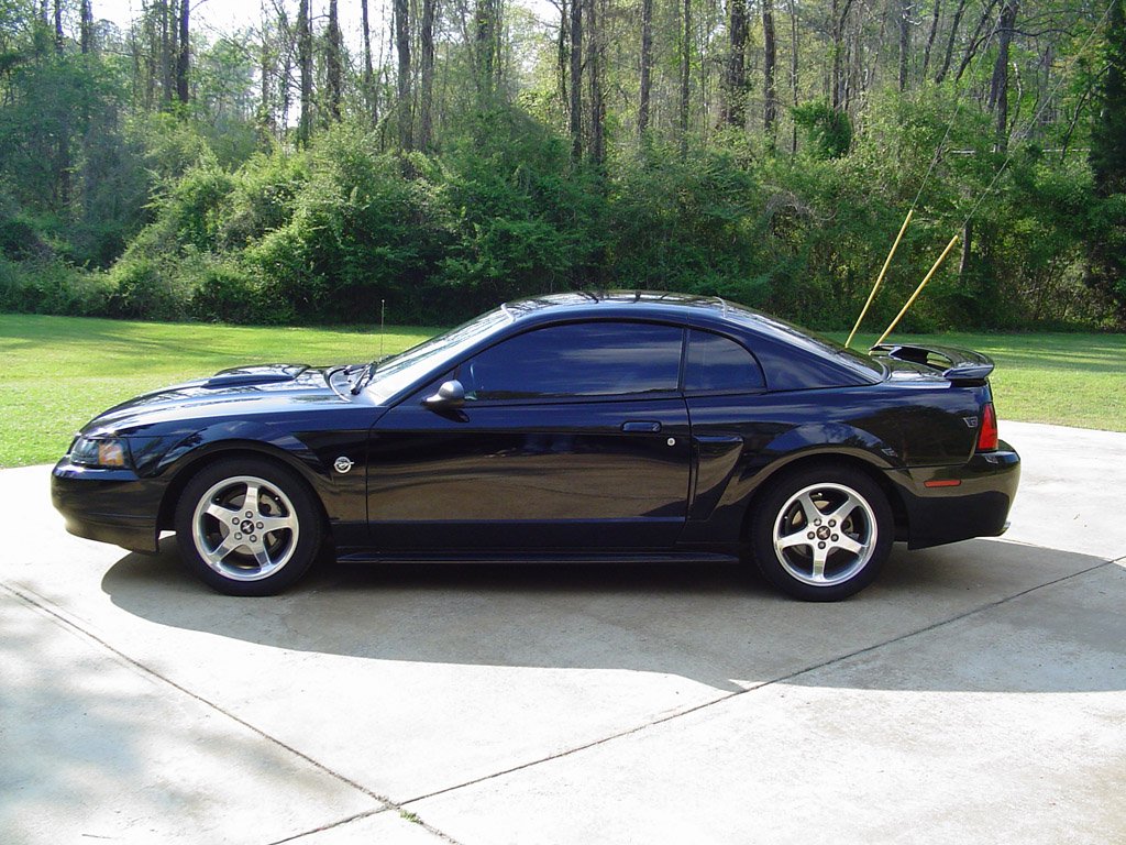 2004 Mustang Parts Amp Accessories Americanmuscle Com Free Shipping