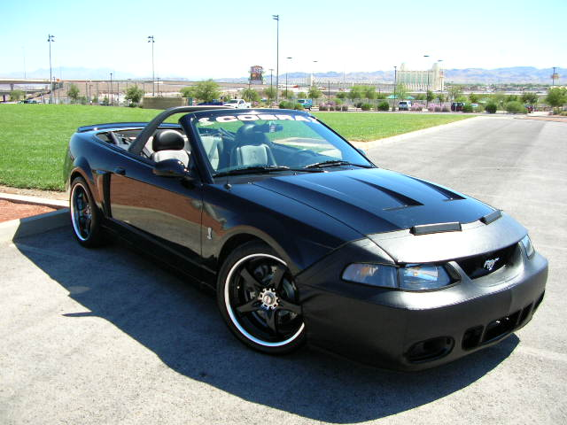 Black 2003 Cobra Convertible 10th Anniversary