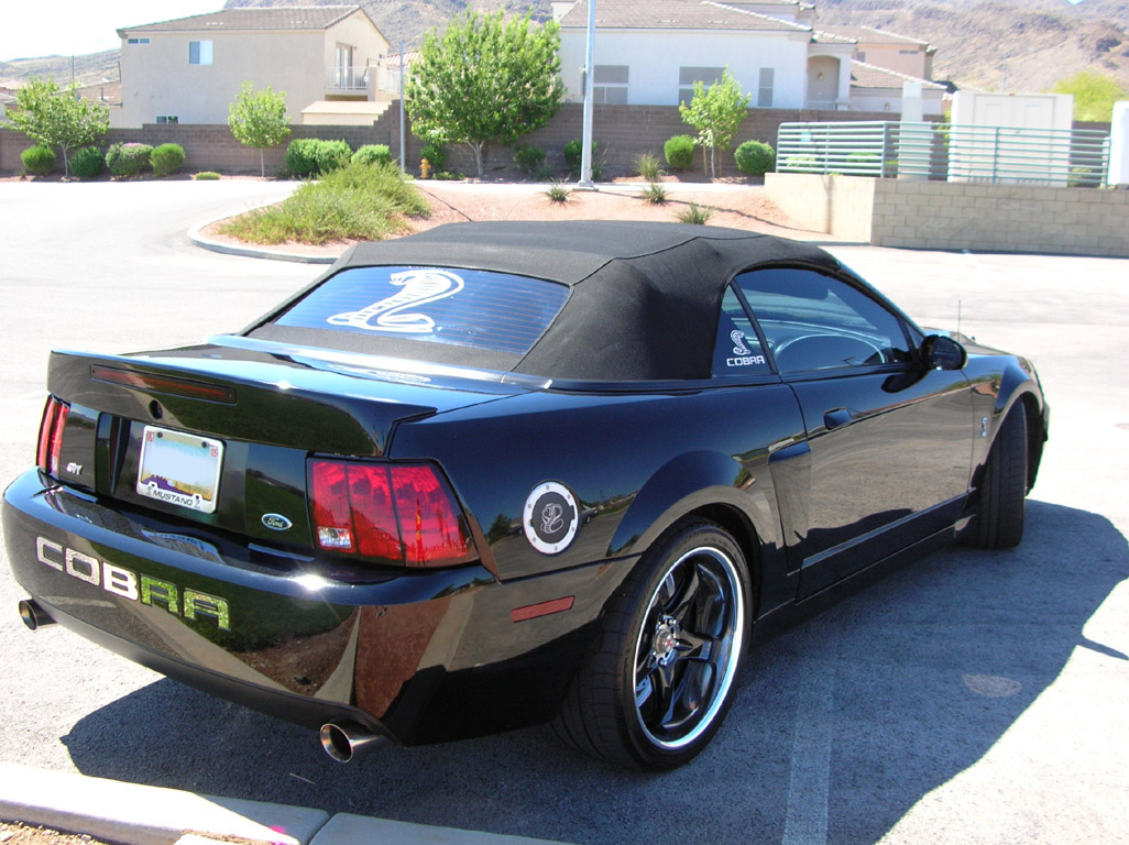 Black 2003 Cobra Convertible