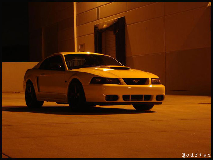 01 Zinc Yellow GT