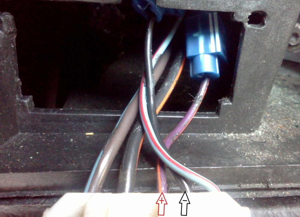 how to install an msd programmable digital shift light on your step 8 complete the installation by going back to the engine bay and connecting the gmr pickup to a primary coil wire on mustangs coil packs