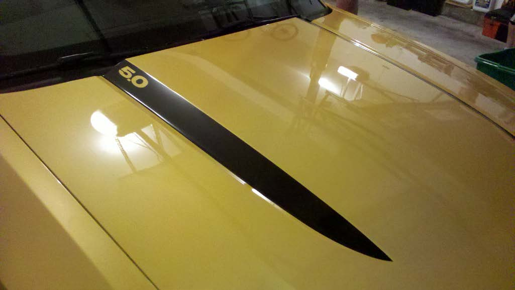 matte-black-hood-accent-decal-10-12-gt-v6