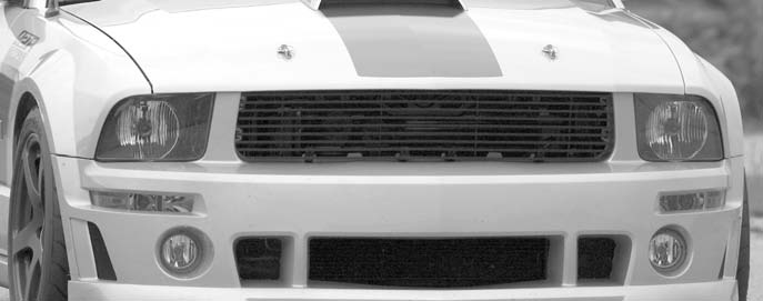 Roush-9-Bar-Black-Billet-Grille-(05-09-GT-V6)