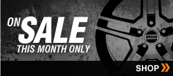 Mustang Parts On Sale Monthly