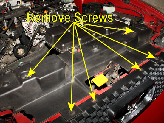 Remove Screws