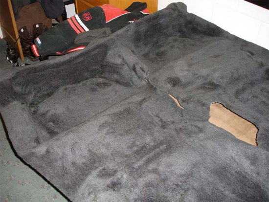 replacecarpet6