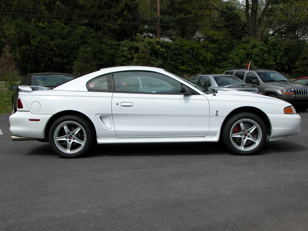 White SVT Cobra with 95 CobraR