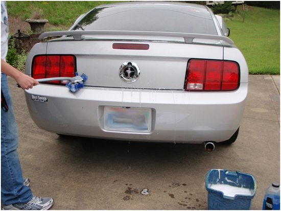 Clean Back of Mustang