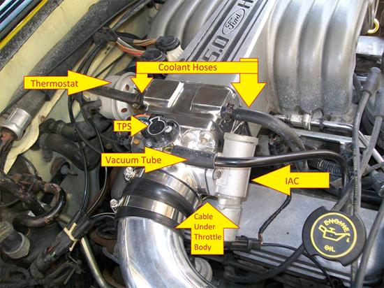 1989 mustang 5 0 egr valve location